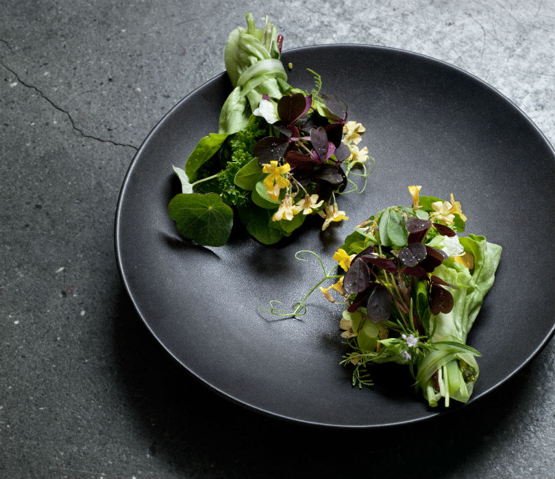 Restaurant Relæ's Herbs Bouquet Recipe