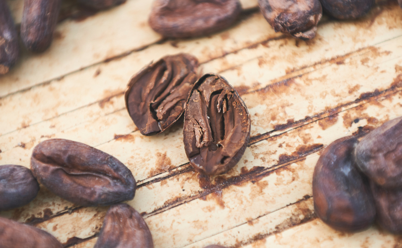 Cacao is being worked by fanatics and geeks in more ways than ever.